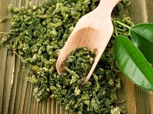 Сухие листочки зеленого чая на совочке