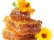Соты, цветы и пчелы