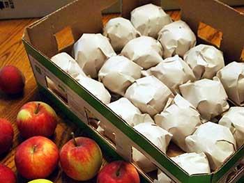 Яблоки в бумаге